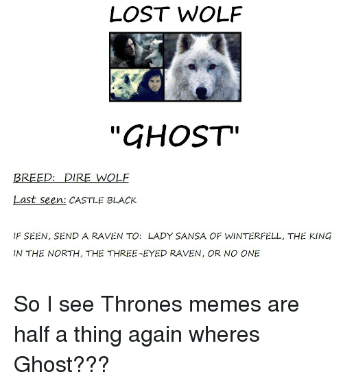 """three eyed raven: LOST WOLF  """"GHOST""""  BREED: DIRE WOLF  Last seen: CASTLE BLACK  IF SEEN, SEND A RAVEN TO: LADY SANSA OF WINTERFELL, THE KING  IN THE NORTH, THE THREE-EYED RAVEN, OR NO ONE So I see Thrones memes are half a thing again wheres Ghost???"""