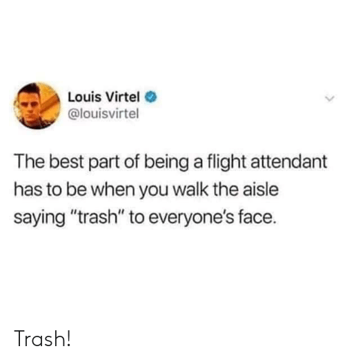 """Flight Attendant: Louis Virtel  @louisvirtel  The best part of being a flight attendant  has to be when you walk the aisle  saying """"trash"""" to everyone's face. Trash!"""