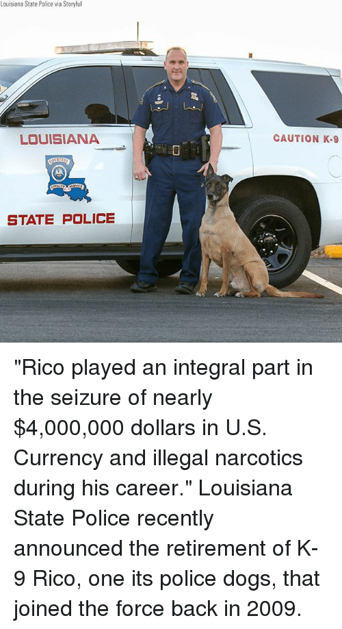 """police dogs: Louisiana State Police via Storyful  LOUISIANA  CAUTION K.9  STATE POLICE """"Rico played an integral part in the seizure of nearly $4,000,000 dollars in U.S. Currency and illegal narcotics during his career."""" Louisiana State Police recently announced the retirement of K-9 Rico, one its police dogs, that joined the force back in 2009."""