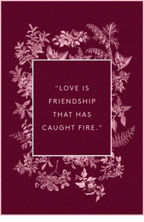 Fire, Love, and Friendship: LOVE IS  FRIENDSHIP  THAT HAS  CAUGHT FIRE
