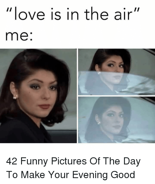 """Funny, Love, and Good: love is in the air""""  me: 42 Funny Pictures Of The Day To Make Your Evening Good"""
