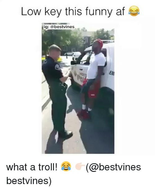 Trollings: Low key this funny af  ig: @bestvines  EM what a troll! 😂 👉🏻(@bestvines bestvines)