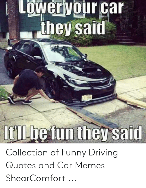 🅱️ 25+ Best Memes About Funny Driving Quotes   Funny ...
