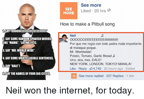 how to write a pitbull song How to write a pitbull song #lol #funny.