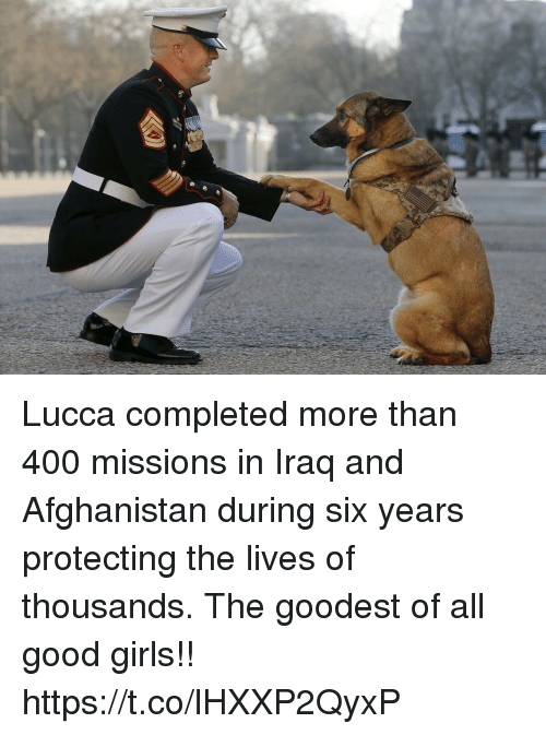 Girls, Memes, and Afghanistan: Lucca completed more than 400 missions in Iraq and Afghanistan during six years protecting the lives of thousands. The goodest of all good girls!! https://t.co/lHXXP2QyxP