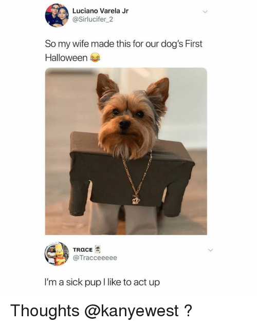 Dogs, Funny, and Halloween: Luciano Varela Jr  @Sirlucifer_2  So my wife made this for our dog's First  Halloween  @Tracceeeee  I'm a sick pup I like to act up Thoughts @kanyewest ?
