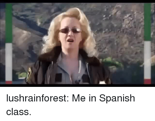 Gif, Spanish, and Tumblr: lushrainforest:  Me in Spanish class.