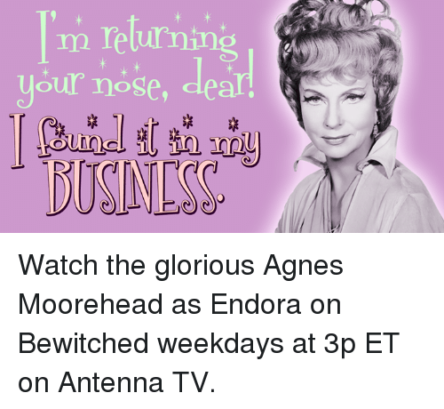 antenna: m returning  your nose Watch the glorious Agnes Moorehead as Endora on Bewitched weekdays at 3p ET on Antenna TV.