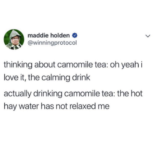 holden: maddie holden  @winningprotocol  thinking about camomile tea: oh yeah i  love it, the calming drink  actually drinking camomile tea: the hot  hay water has not relaxed me