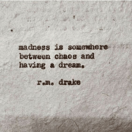 A Dream: madness is somewhere  between chaos and  having a dream.  roRo drake