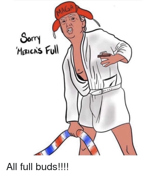Sorry, All, and Full: MAGA  Sorry