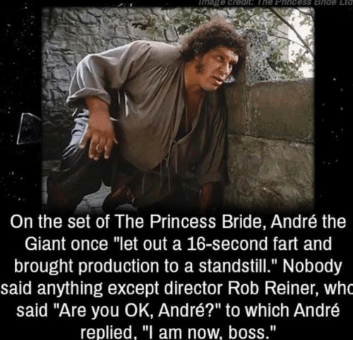 """are you ok: mage creah The Eincess Bide Etd  On the set of The Princess Bride, André the  Giant once """"let out a 16-second fart and  brought production to a standstill."""" Nobody  said anything except director Rob Reiner, who  said """"Are you OK, André?"""" to which André  replied, """"I am now, boss."""""""