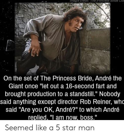 """are you ok: mage credit The Phincess Bride  Lta  On the set of The Princess Bride, André the  Giant once """"let out a 16-second fart and  brought production to a standstill."""" Nobody  said anything except director Rob Reiner, wh  said """"Are you OK, André?"""" to which André  replied, """"I am now, boss."""" Seemed like a 5 star man"""
