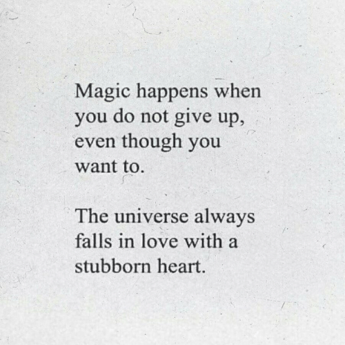 Love, Heart, and Magic: Magic happens when  you do not give up,  even though you  want to  The universe always  falls in love with a  stubborn heart.