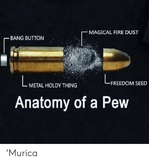 Fire, Freedom, and Metal: MAGICAL FIRE DUST  BANG BUTTON  FREEDOM SEED  METAL HOLDY THING  Anatomy of a Pew 'Murica