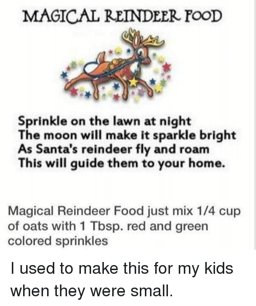 Magical Reindeer Food Sprinkle On The Lawn At Night The Moon Will