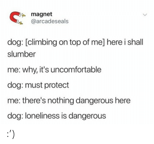 Protect: * magnet  @arcadeseals  dog: [climbing on top of me] here i shall  slumber  me: why, it's uncomfortable  dog: must protect  me: there's nothing dangerous here  dog: loneliness is dangerous :')