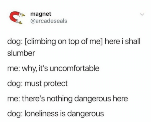 Protect Me: magnet  @arcadeseals  dog: [climbing on top of me] here i shall  slumber  me: why, it's uncomfortable  dog: must protect  me: there's nothing dangerous here  dog: loneliness is dangerous