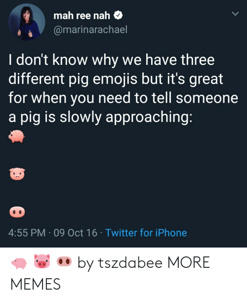 Dank, Iphone, and Memes: mah ree nah $  @marinarachael  I don't know why we have three  different pig emojis but it's great  for when you need to tell someone  a pig is slowly approaching  4:55 PM 09 Oct 16 Twitter for iPhone 🐖 🐷 🐽 by tszdabee MORE MEMES