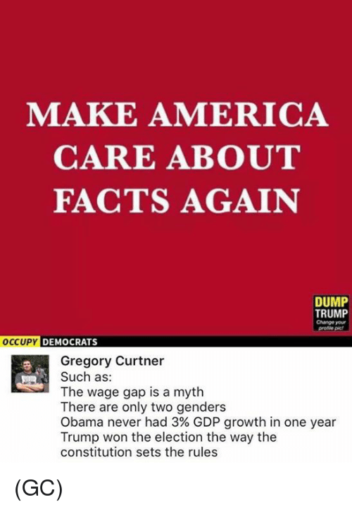 America, Facts, and Memes: MAKE AMERICA  CARE ABOUT  FACTS AGAIN  DUMP  TRUMP  Change your  DEMOCRATS  Gregory Curtner  Such as:  The wage gap is a myth  There are only two genders  Obama never had 3% GDP growth in one year  Trump won the election the way the  constitution sets the rules (GC)