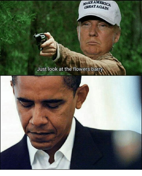 just look at the flowers: MAKEAMERICA  GREATAGAIN  Just look at the flowers barry