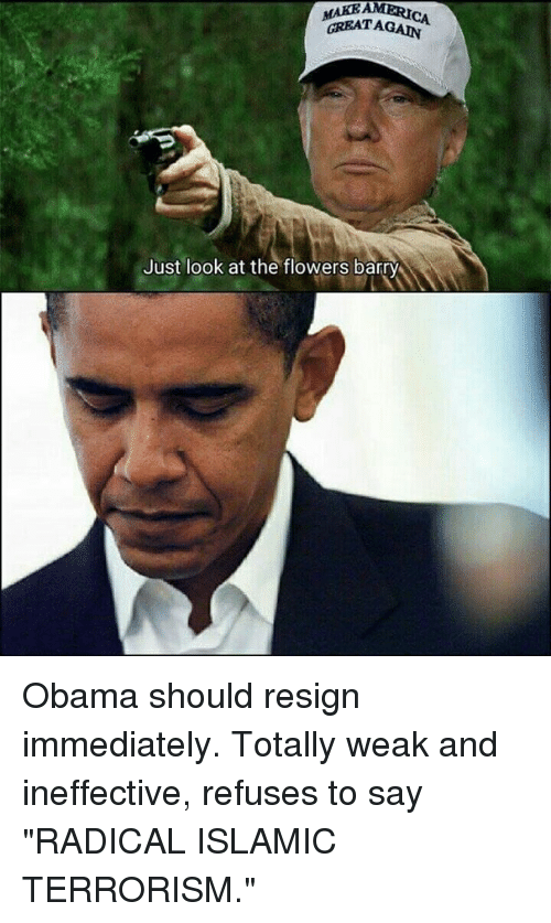 """Memes, Obama, and Flowers: MAKEAMERICA  GREATAGAIN  Just look at the flowers barry Obama should resign immediately. Totally weak and ineffective, refuses to say """"RADICAL ISLAMIC TERRORISM."""""""