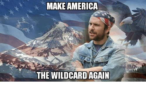 Memes, 🤖, and Wildcard: MAKEAMERICA  THE WILDCARD AGAIN