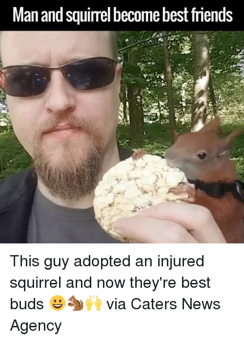 Dank, News, and Best: Man and squirrel become bestfriends This guy adopted an injured squirrel and now they're best buds 😀🐿🙌  via Caters News Agency