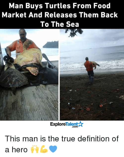 talent explore: Man Buys Turtles From Food  Market And Releases Them Back  To The Sea  Talent  Explore This man is the true definition of a hero 🙌💪💙