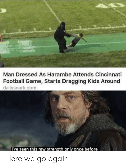 Football, Game, and Kids: Man Dressed As Harambe Attends Cincinnati  Football Game, Starts Dragging Kids Around  dailysnark.com  I've seen this raw strength only once before Here we go again