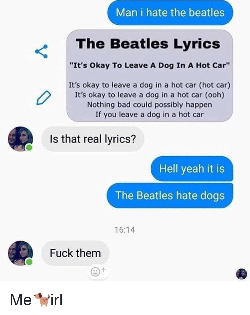 """Bad, Dogs, and The Beatles: Man i hate the beatles  The Beatles Lyrics  """"It's Okay To Leave A Dog In A Hot Car""""  It's okay to leave a dog in a hot car (hot car)  It's okay to leave a dog in a hot car (ooh)  Nothing bad could possibly happen  If you leave a dog in a hot car  Is that real lyrics?  Hell yeah it is  The Beatles hate dogs  16:14  Fuck them Me🐕irl"""