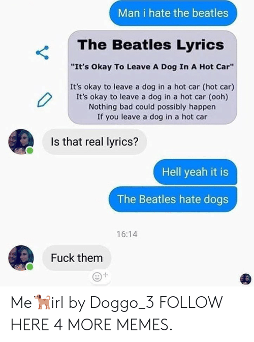 """Bad, Dank, and Dogs: Man i hate the beatles  The Beatles Lyrics  """"It's Okay To Leave A Dog In A Hot Car""""  It's okay to leave a dog in a hot car (hot car)  It's okay to leave a dog in a hot car (ooh)  Nothing bad could possibly happen  If you leave a dog in a hot car  Is that real lyrics?  Hell yeah it is  The Beatles hate dogs  16:14  Fuck them Me🐕irl by Doggo_3 FOLLOW HERE 4 MORE MEMES."""