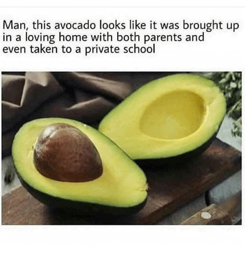 Dank, Parents, and School: Man, this avocado looks like it was brought up  in a loving home with both parents and  even taken to a private school