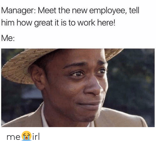 Meet The: Manager: Meet the new employee, tell  him how great it is to work here!  Me: me😭irl
