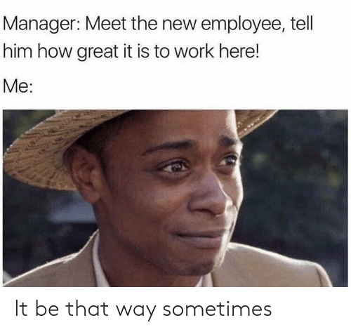 Meet The: Manager: Meet the new employee, tell  him how great it is to work here!  Me: It be that way sometimes
