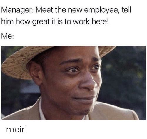 Meet The: Manager: Meet the new employee, tell  him how great it is to work here!  Me: meirl