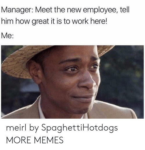Meet The: Manager: Meet the new employee, tell  him how great it is to work here!  Me: meirl by SpaghettiHotdogs MORE MEMES