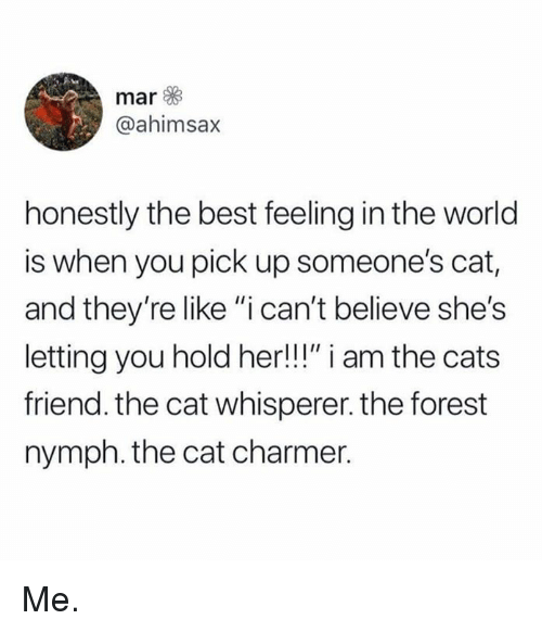 """Cats, Dank, and Best: mar  @ahimsax  honestly the best feeling in the world  is when you pick up someone's cat,  and they're like """"i can't believe she's  letting you hold her!!!"""" i am the cats  friend. the cat whisperer. the forest  nymph. the cat charmer. Me."""