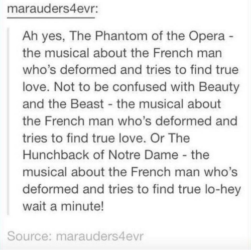 wait a minute: marauders4evr:  Ah yes, The Phantom of the Opera  the musical about the French man  who's deformed and tries to find true  love. Not to be confused with Beauty  and the Beast the musical about  the French man who's deformed and  tries to find true love. Or The  Hunchback of Notre Dame the  musical about the French man who's  deformed and tries to find true lo-hey  wait a minute!  Source: marauders4evr