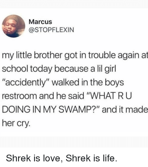 """Life, Love, and Memes: Marcus  @STOPFLEXIN  my little brother got in trouble again at  school today because a lil girl  """"accidently"""" walked in the boys  restroom and he said """"WHAT R U  DOING IN MY SWAMP?"""" and it made  her cry. Shrek is love, Shrek is life."""