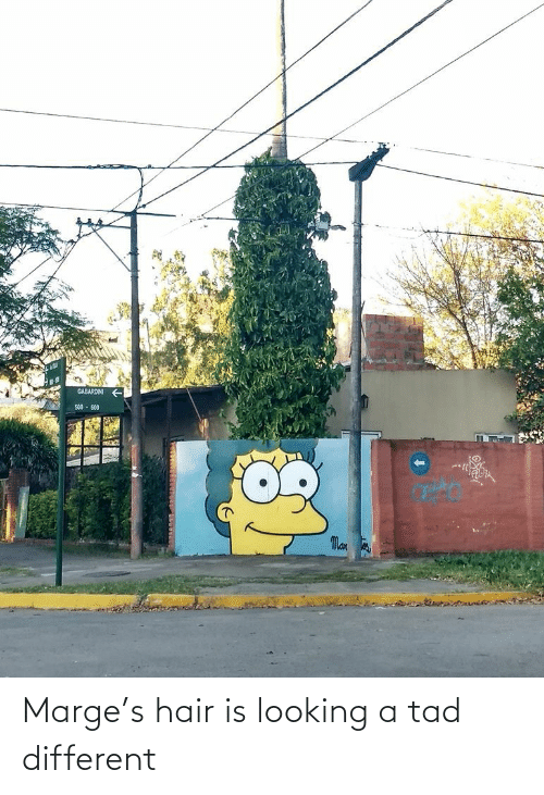 Hair: Marge's hair is looking a tad different