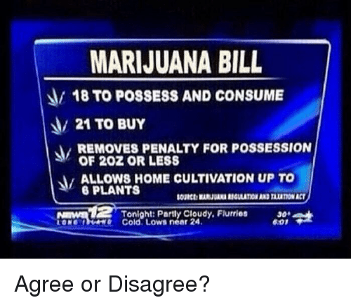 possessive: MARIJUANA BILL  18 TO POSSESS AND CONSUME  21 TO BUY  REMOVES PENALTY FOR POSSESSION  OF 202 OR LESS  ALOWS HOME CULTIVATION UP TO  6 PLANTS  Nmnd  Tonight: Partly Cloudy, Flurries  e Cold. Lows near 24  30  6.01 Agree or Disagree?