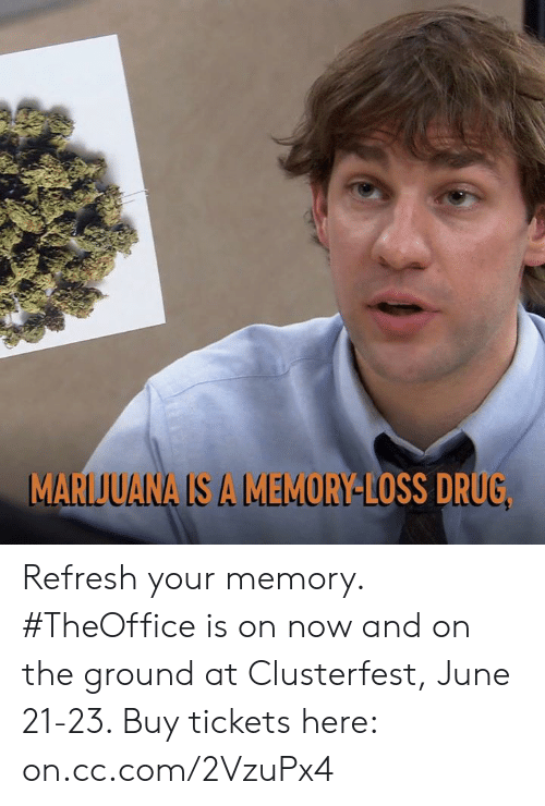 Dank, Marijuana, and Drug: MARIJUANA IS A MEMORY-LOSS DRUG Refresh your memory. #TheOffice is on now and on the ground at Clusterfest, June 21-23. Buy tickets here: on.cc.com/2VzuPx4