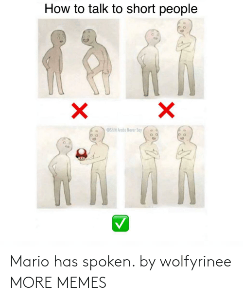 Spoken: Mario has spoken. by wolfyrinee MORE MEMES