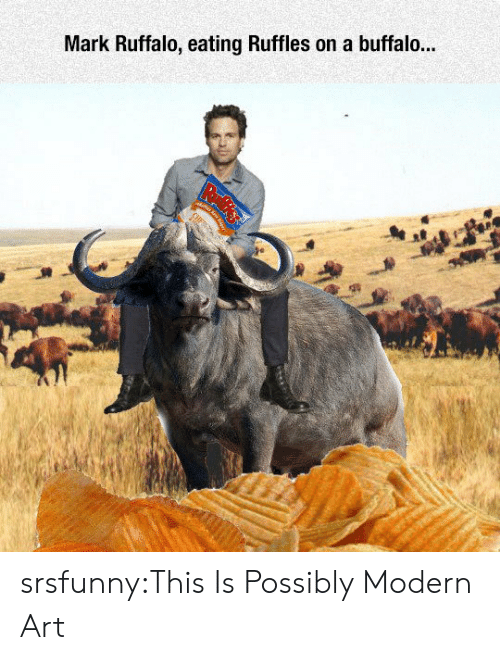 Tumblr, Mark Ruffalo, and Blog: Mark Ruffalo, eating Ruffles on a buffalo... srsfunny:This Is Possibly Modern Art