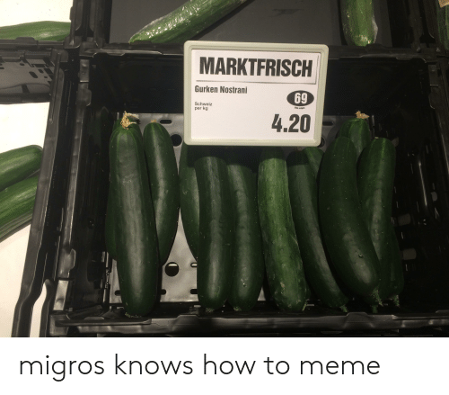 Funny, Meme, and How To: MARKTFRISCH  Gurken Nostrani  69  Schweiz  per kg  Bitte wagen  4.20 migros knows how to meme