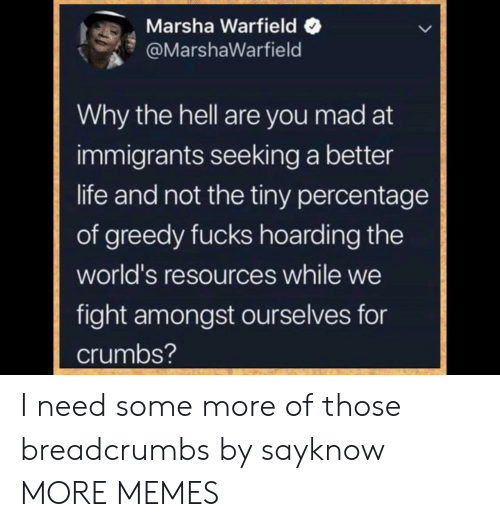 Greedy: Marsha Warfield  @MarshaWarfield  Why the hell are you mad at  immigrants seeking a better  life and not the tiny percentage  of greedy fucks hoarding the  world's resources while we  fight amongst ourselves for  crumbs? I need some more of those breadcrumbs by sayknow MORE MEMES