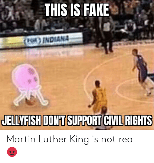 Martin Luther King: Martin Luther King is not real 😡