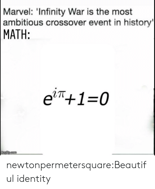 Beautiful, Tumblr, and Blog: Marvel: 'Infinity War is the most  ambitious crossover event in history  MATH:  e'π+1-0  RTT newtonpermetersquare:Beautiful identity