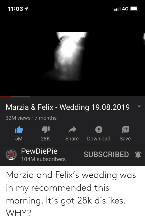 this morning: Marzia and Felix's wedding was in my recommended this morning. It's got 28k dislikes. WHY?